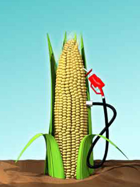 corn ethanol the future fuel essay Fiction essay follow/fav got  corn ethanol is supposedly the way of the future  this ratio is much too low for corn ethanol or e85 to be efficient fuel in.